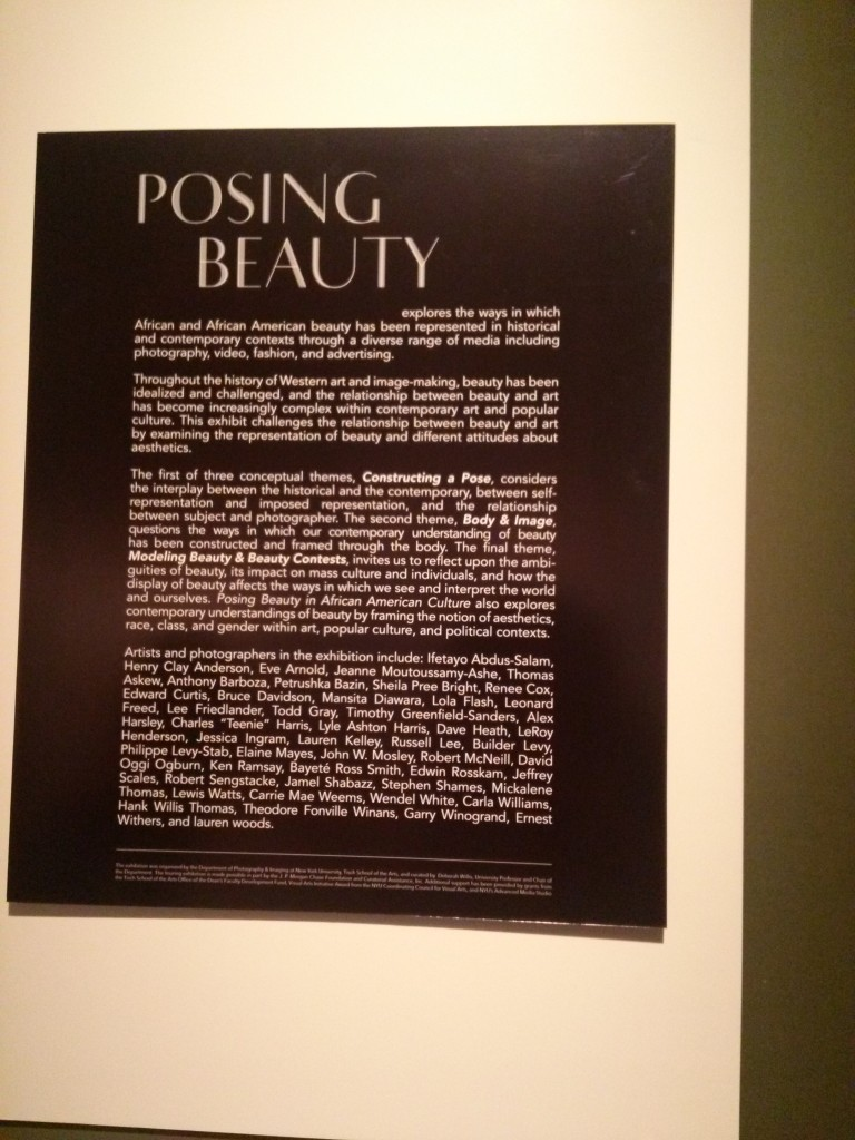 More Info about Posing Beauty